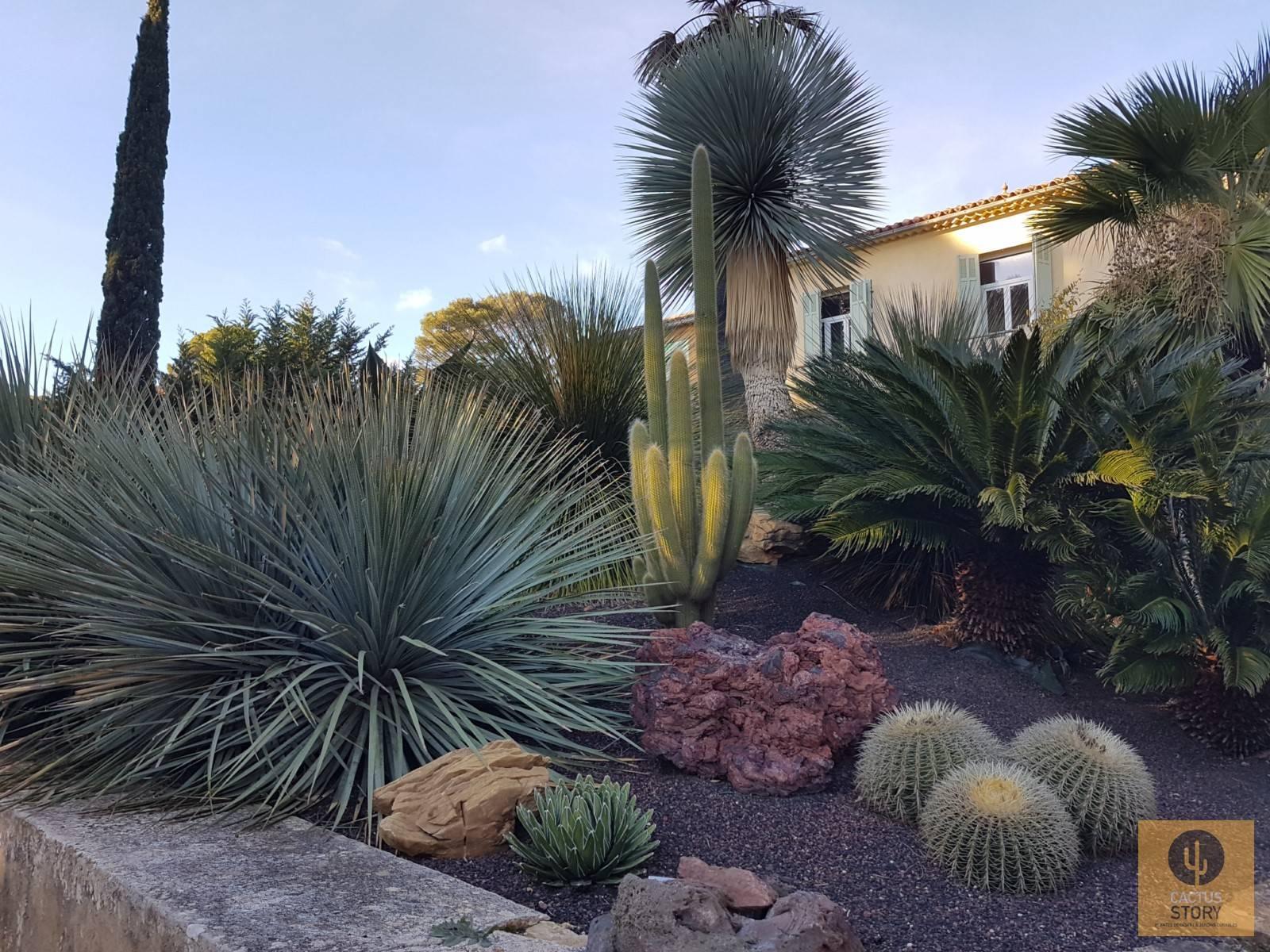 Aménagement d\'un jardin sec rocaille - Vente de cactus et plantes ...