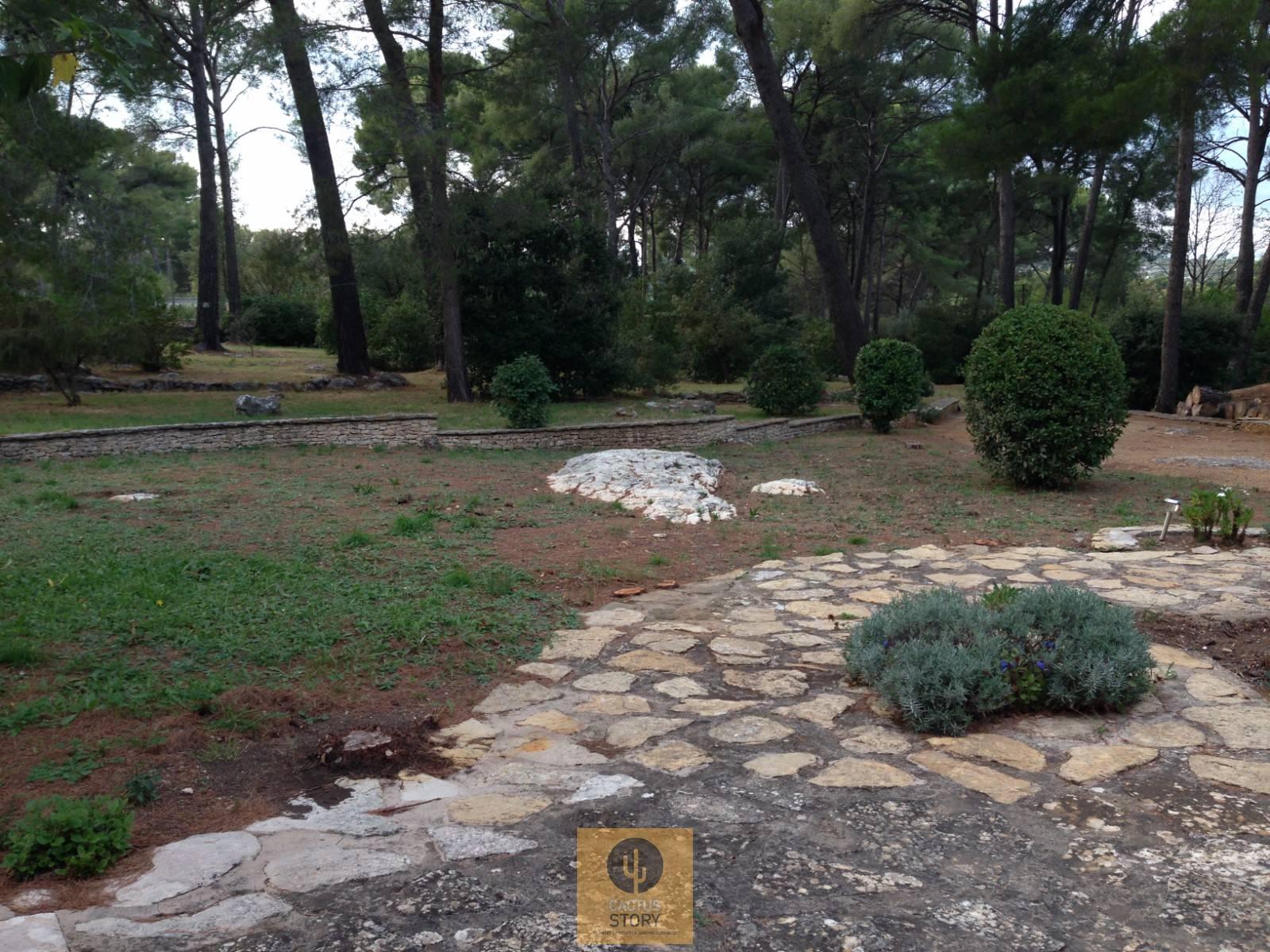 Aménagement jardin rocaille La Ciotat 13 - Vente de cactus et ...